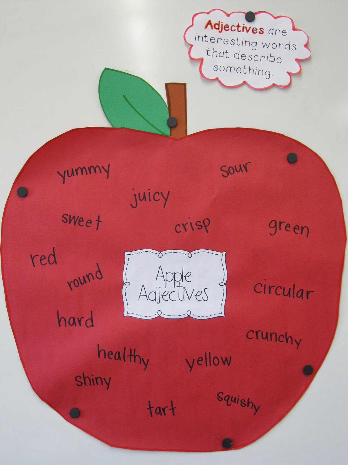 Parts of an Apple Apple Activities