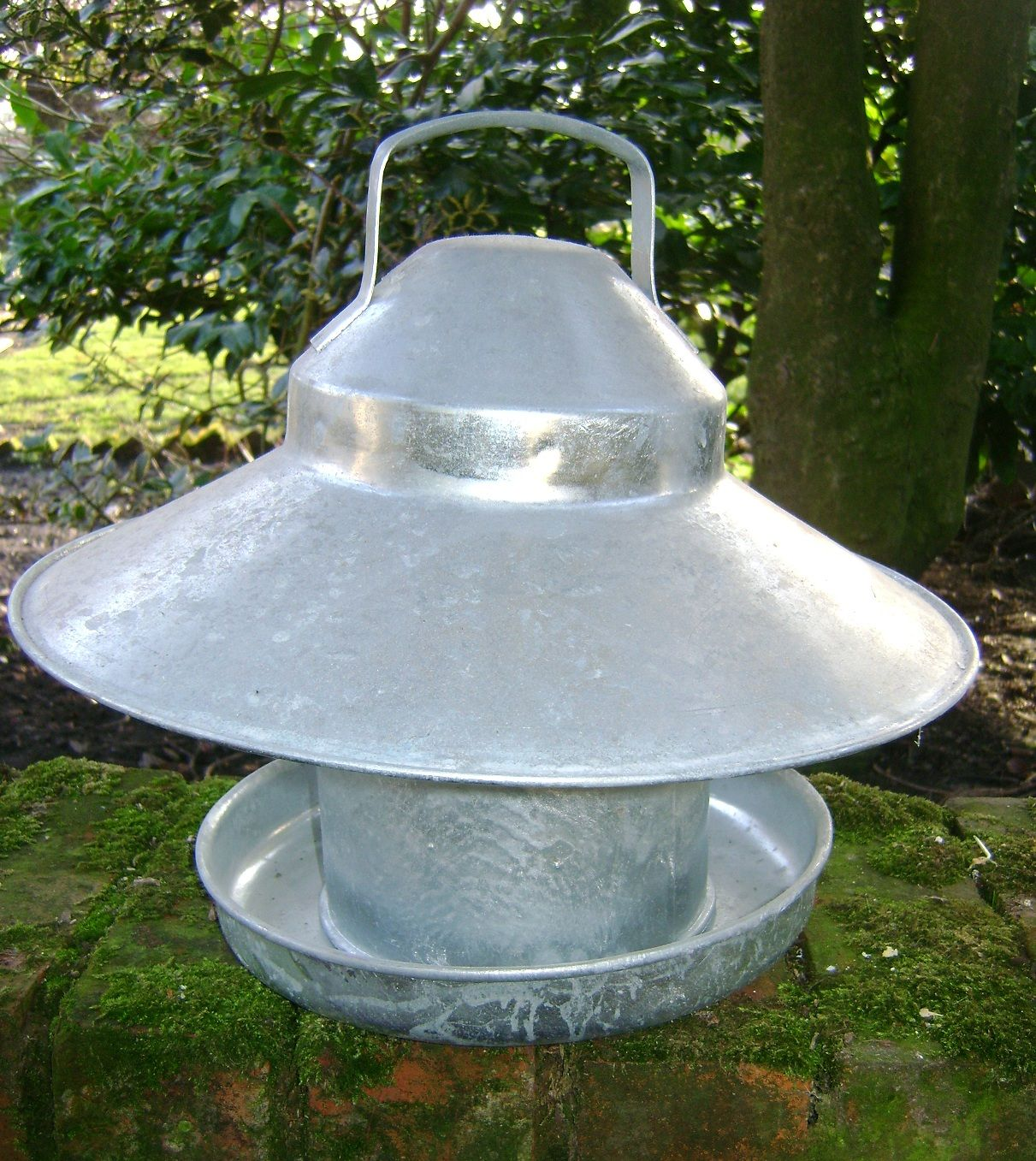 GALVANISED OUTDOOR POULTRY FEEDER WITH RAIN HAT 2.5KG -   Chicken Feeders Ideas