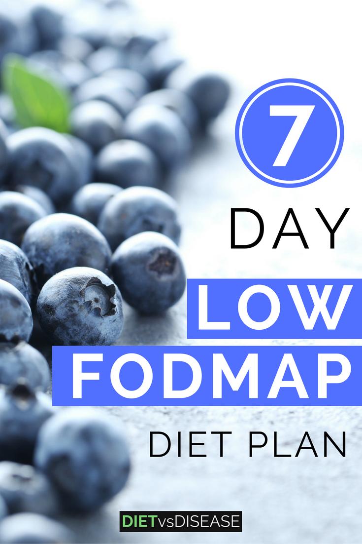24 ibs diet plan ideas