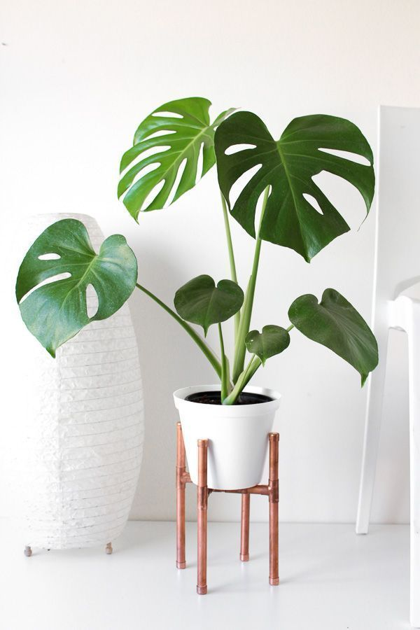 Raised Copper Pot Plant Stand DIY // Tutorial -   17 plants Stand inspiration ideas