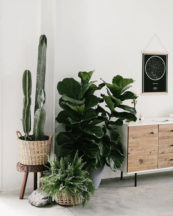58 DIY Plant Stand ideas to Fill Your Living Room With Greenery -   17 plants Stand inspiration ideas