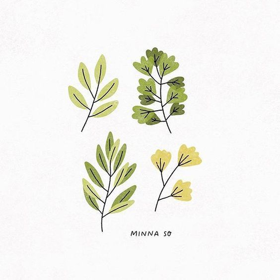 8 plants Aesthetic drawing ideas