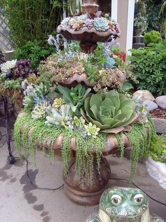 Top Diy Water Fountain Ideas And Projects - Craft Keep -   14 planting succulents in a birdbath ideas